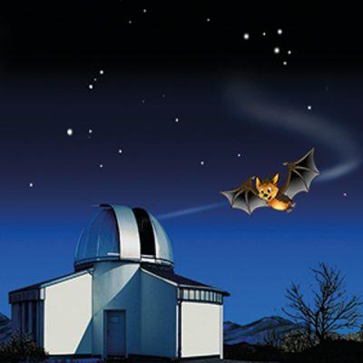 Flappi mit Observatorium